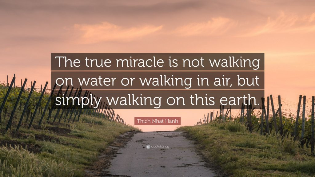 """The True miracle is not walking on water or walking in air, but simply walking on this earth."" - Thich Nhat Hanh"